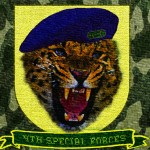 GEOpards patch