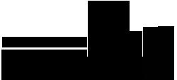 Logo RSP Karneval 250px